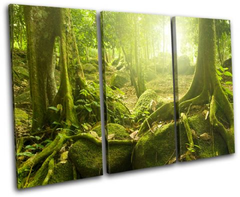 Mystical Forest Trees Landscapes - 13-1824(00B)-TR32-LO